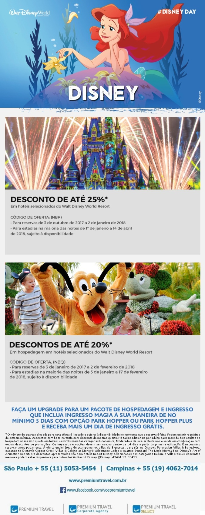 newsletter_disney